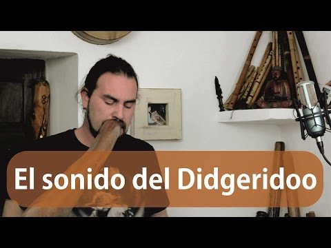 2 - El sonido del Didgeridoo