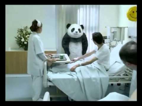 Lendakaris muertos- oso panda (Video)