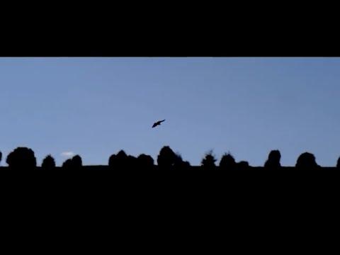 """""""Morna"""" , Proyecto Entremares (videoclip oficial)"""