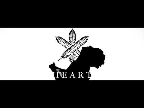 THE GREAT DISCORD - HEART (Official Video)
