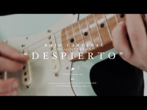 Rojo Cardinal - Despierto (Official Video)