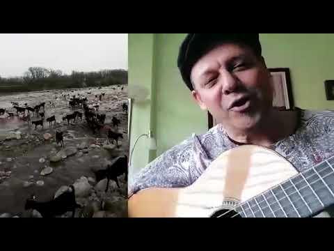 "RONDEÑAVIRUS de ""LOS FRIKIFOLES"""