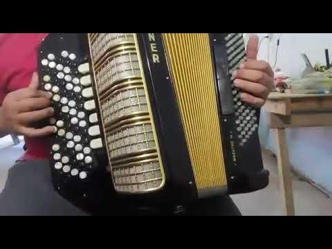 VENDO acordeón HOHNER MAESTRO III. 96 bajos. En Re y Sol. Consultas 3777553274