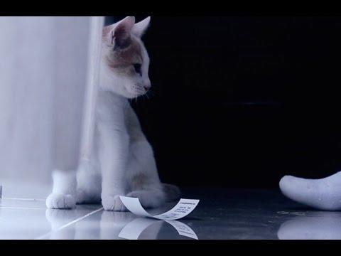 Animal de Ciudad - Aprieta el Botón (2015)