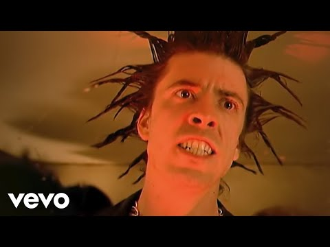 Foo Fighters - Everlong (Official Music Video)