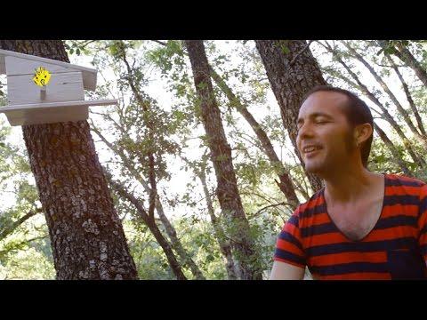 CERCA DEL SOL (Videoclip) - Dr. Sapo