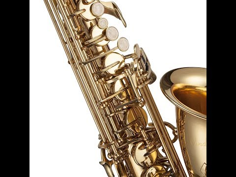 Windsor MI 1005 Student Saxophone Including Specifications Review