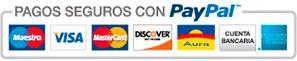 logotipo paypal pagos tarjetas
