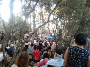 Vida Festival 2015