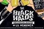 The Black Halos